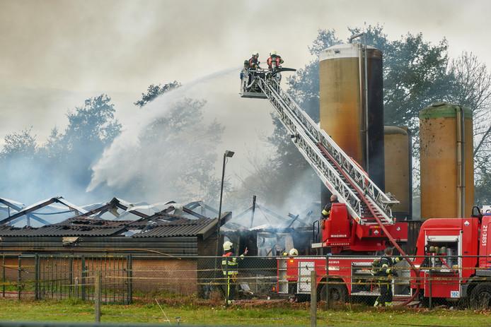 In Uden brandden vorig jaar november twee kippenstallen af. 40.000 kippen kwamen daarbij om.