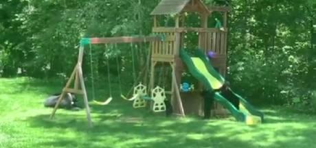 Des oursons font du toboggan dans un jardin en Caroline du Nord