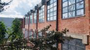 Fidoucia doet winkel aan Brusselsesteenweg opnieuw open na problemen op site 'du Parc'