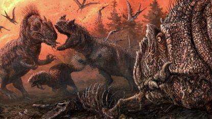 Dinosaurussen veranderden bij grote honger in kannibalen