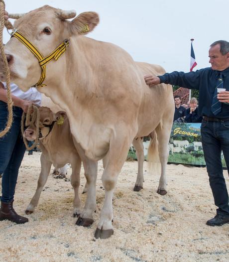 Onderscheiding voor enkele vrijwilligers vleesveekeuring in Enter