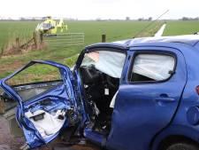Auto botst op boom bij Culemborg; bestuurder raakt bekneld