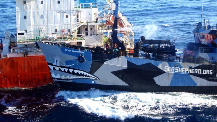 Een schip van Sea Shepherd (rechts) botst tegen een Japans schip aan dat de walvisvaarders van nieuwe brandstof moet voorzien.. Beeld ANP