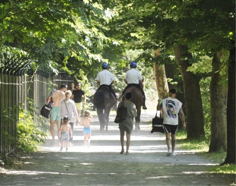 Burgemeester De Clercq: 'In de Gentse Blaarmeersen patrouilleert de politie te paard en met honden. Na de massale vechtpartij op paasmaandag zijn er slechts twee incidenten geweest'  Beeld