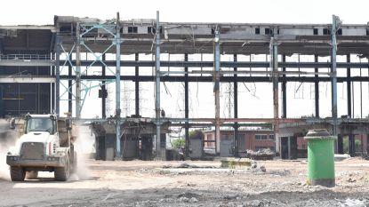 Milieuvereniging MOW volhardt in verzet tegen nieuwe industrie op verlaten site in Ruien