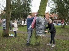 Jassen hangen te grabbel aan de bomen in Harderwijks park: 'Deze jas voor jouw kou'