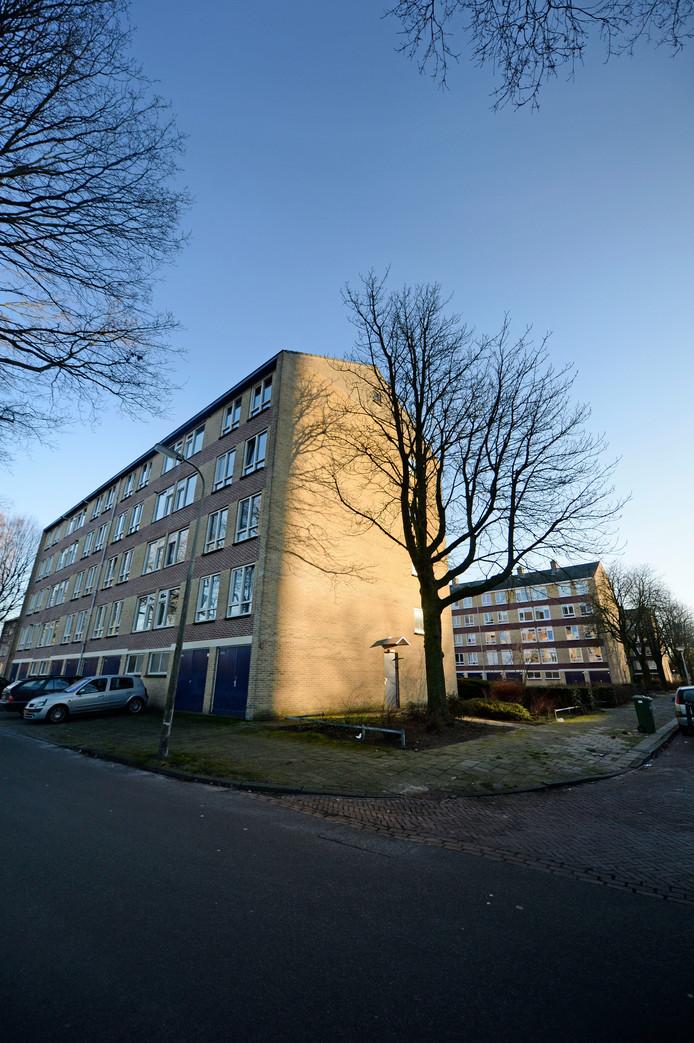 Illegale onderverhuur is in de Dommelstraat aan de orde van de dag. Twee flats bestaan minstens voor de helft uit kamertjes, met de bijkomende sociale problematiek.