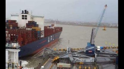 Containerschip slaat op drift in Deurganckdok en ramt havenkraan