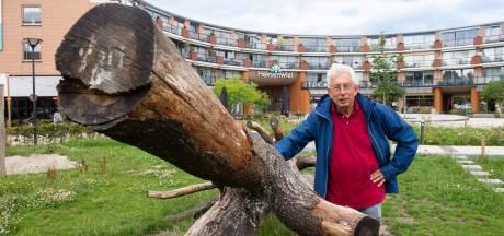 Hoe een Bredase woonwijk een toeristische trekpleister moet worden
