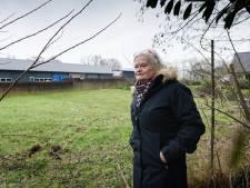 'Coulisselandschap in Diepenheim verstoord door grote bedrijfshal'