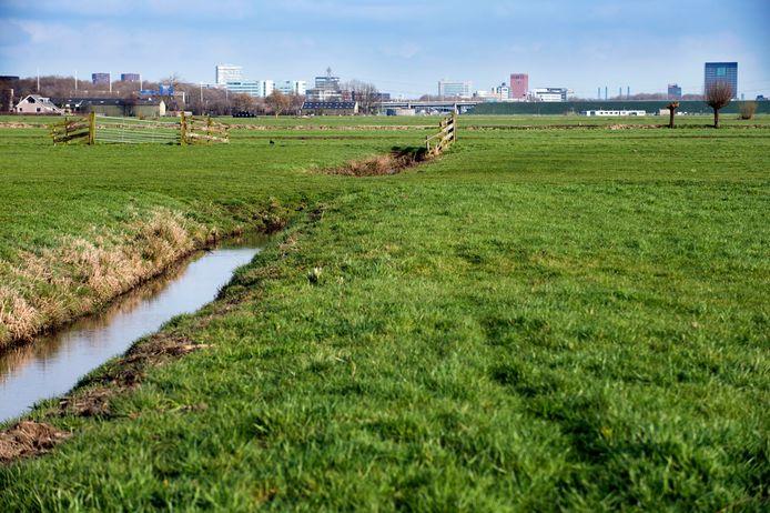 Polder Rijnenburg ten zuid-westen van Utrecht.