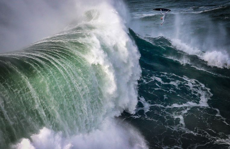 Hoe surfers de extreem hoge golven van Nazaré ontdekten