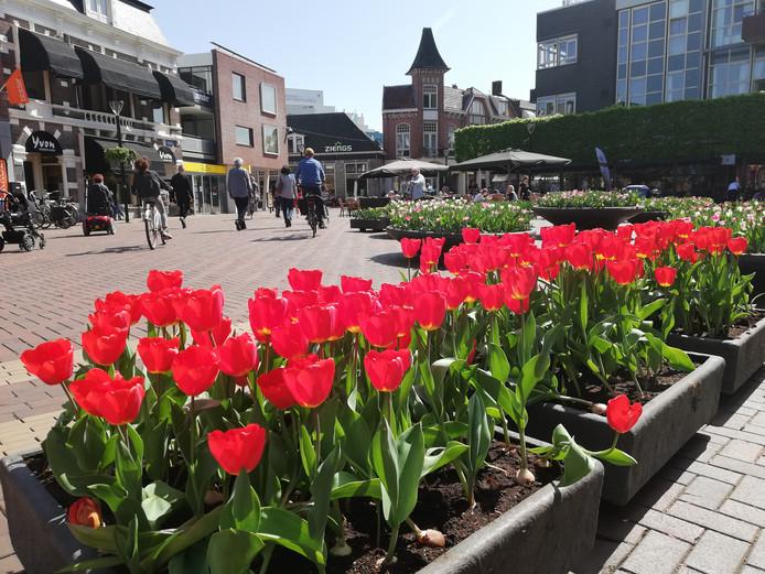 De tulpen op de Koornmarkt in Almelo.