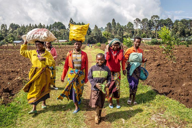 Dorpelingen in Virunga National Parl.  Beeld Noël van Bemmel