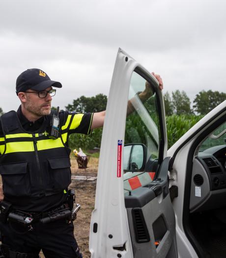 Amsterdamse agenten in Tubbergen: van de Wallen naar het weiland
