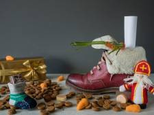 Sint gaat digitaal in Burgh-Haamstede
