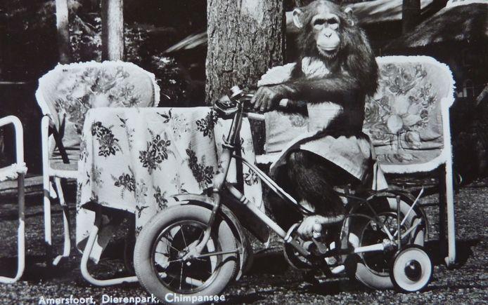 Mike op de fiets