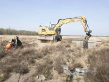 Waterhuishouding Wierdense Veld weer op orde: cruciale stuwen gerepareerd