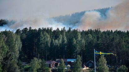 """Zeker zestig bosbranden na extreme hitte en aanhoudende droogte in Zweden: """"Meest ernstige situatie ooit"""""""