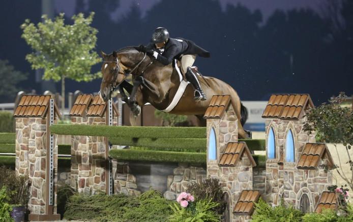 Het paard Cuba, in Strijbeek gefokt door Hans de Roover, is paard van het jaar 2017 in de Verenigde Staten