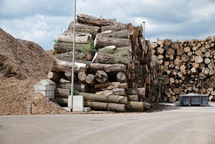 Hout ligt klaar om te worden verbrand in een biomassacentrale in Cuijk.