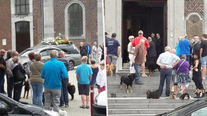 Pakkend afscheid van overleden dierenarts: 150 honden en hun baasjes vormen erehaag