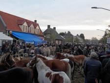 15 mille voor feest rond driehonderdste paardenmarkt