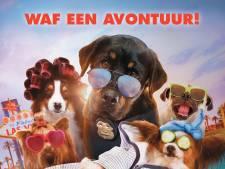 Met je hond naar de film? Het kan in Gouda