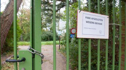 """Code geel, nummer 1722 geactiveerd, Brusselse parken gesloten: """"Rukwinden tot 85 km/u op komst"""""""
