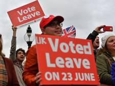 Bedrijfsleven Nederland gaat bloeden bij harde brexit