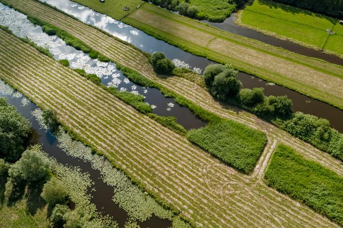 Nederlands landschap bij Vinkeveen.