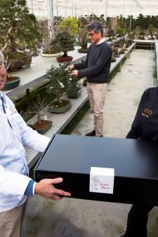 Genieten tijdens de avondklok? Dit Aziatische sterrenrestaurant begint afhaalpunt bij... een bonsaikwekerij