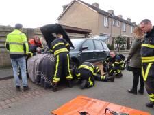 Zwaargewonde kat vlucht na aanrijding in Rijen onder motorkap maar komt muurvast te zitten