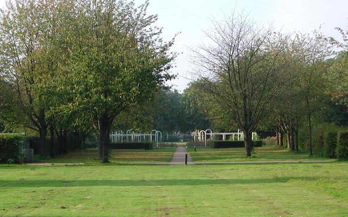 De kersenlaan en aangrenzende boog in Park Schothorst.