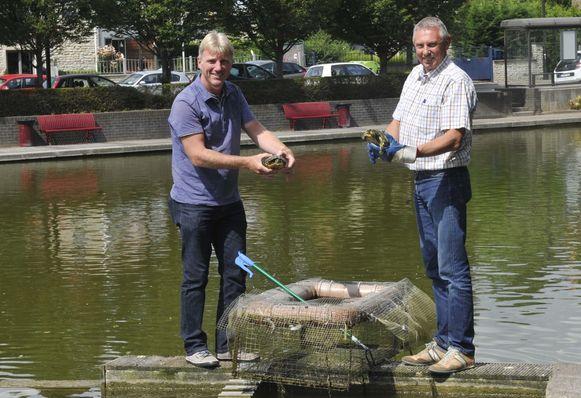 Milieuambtenaar Guido Declerck en schepen Erik Rennen halen de schildpadden uit hun val.