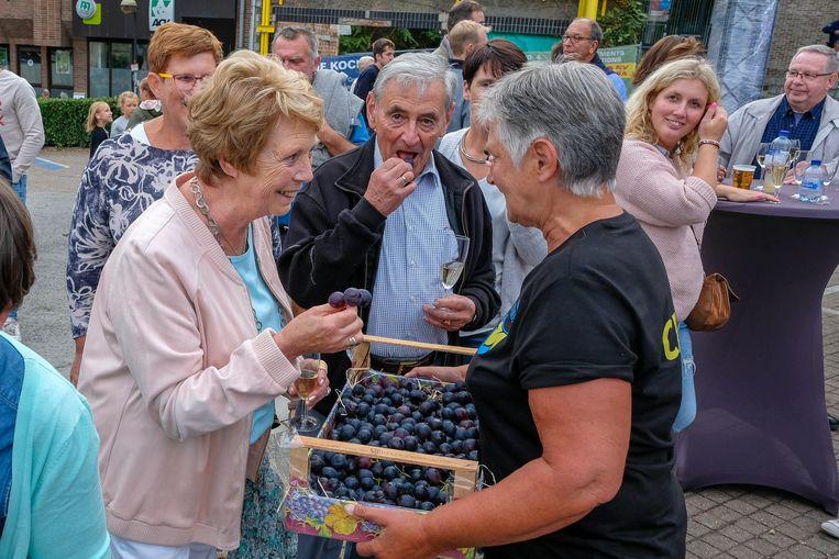 Tijdens de openingsavond van de Druivenfeesten worden de nieuwe Druivenambassadeur en vice-Druivenambassadeur bekendgemaakt.