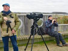 Najaarstrek bij Breskens, alle vogels laten zich tellen, tot 18.487 stuks