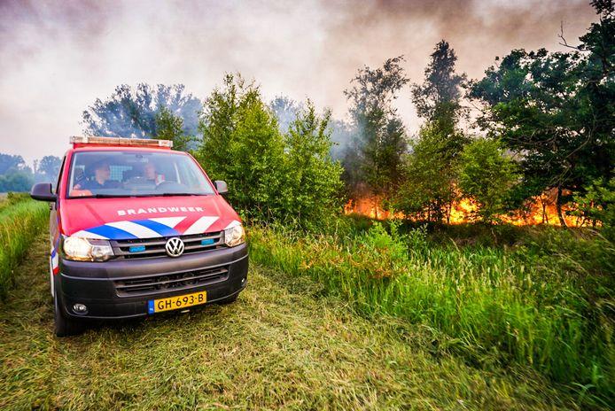Brandweer bij de oplaaiende brand in De Peel