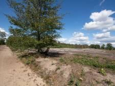 Plan voor 'IJstijdenpad' op Sallandse Heuvelrug