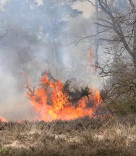 Brand in natuurgebied Lattrop-Breklenkamp na week weer gedoofd