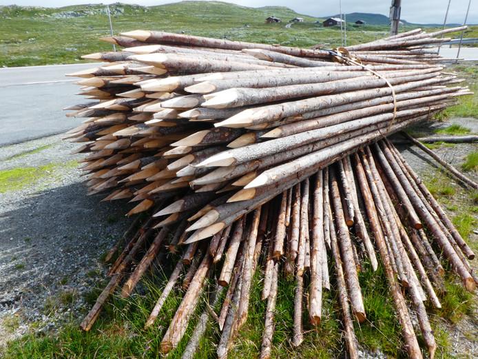 Deze palen langs de Noorse Hardanger Vidda lijken wat groot uitgevallen potloden. Ze liggen klaar om wegen te markeren als er weer sneew gaat vallen.