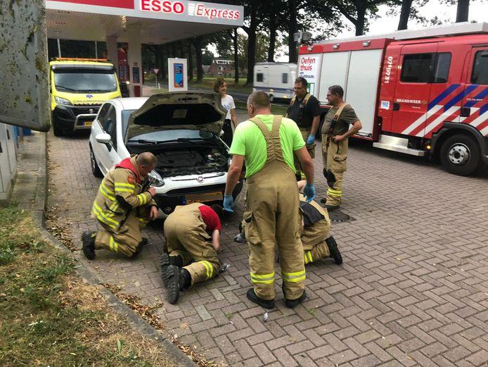 De duif zat klemvast in de grill van de auto na de aanrijding in Drempt.