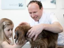 Een giga tekort aan dierenartsen en specialisten: '75 procent ziet hun huisdier als kind'