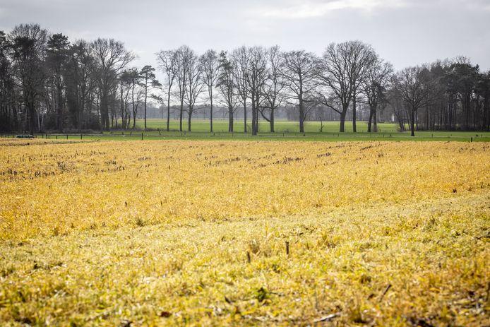 Agrarische gebieden kleuren oranje/geel door gebruik van Roundup.