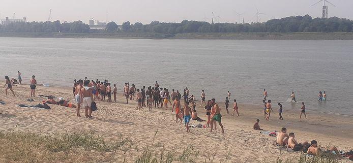Zo'n veertig jongeren komen samen op het strand van Sint-Anneke.