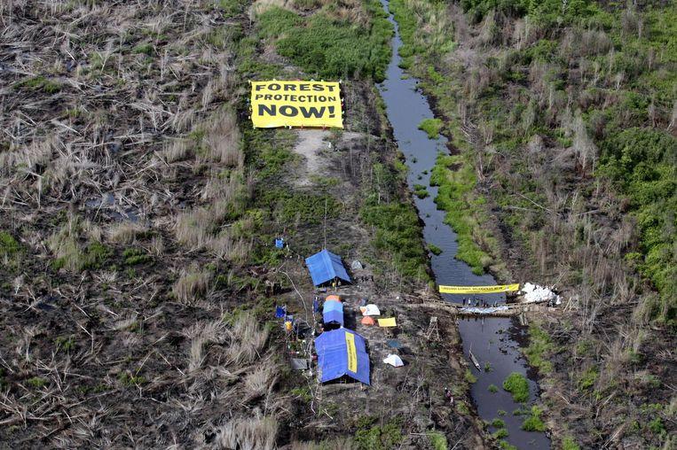 Greenpeace activisten protesteren met een reusachtig doek, op een platgebrand stuk grond. Beeld epa