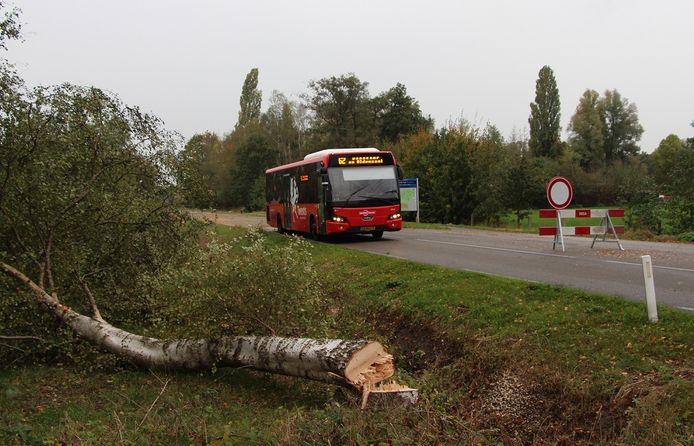 Bus 62 vanuit Borculo passeert tussen Neede en Rietmolen de resten van omgezaagde bomen, over de voor overig verkeer afgesloten N315.