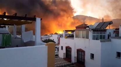 Grote natuurbrand bij Marbella: bewoners van 40 woningen geëvacueerd
