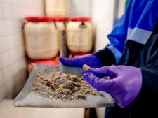 Nederlanders veroordeeld voor betrokkenheid bij drugslab in België