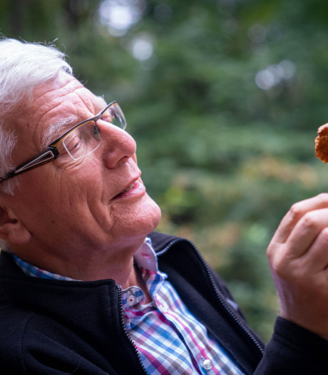 Topseizoen voor paddenstoel in bos rond Arnhem